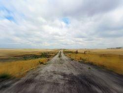 Farm Road 002