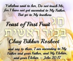Feast of First Fruits