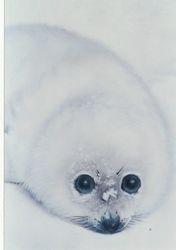 Seal of Hope