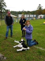 NH Healthy Pets Animal CPR Demo