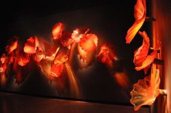 Chihuly Museum 7