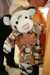 White tiger in his army outfit