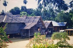 312 Typical Malay Homes K.L.