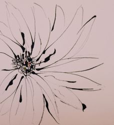 Flower Study in Ink 1