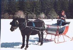 1991 Christmas Card