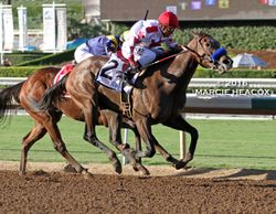 Noted and Quoted wins the Chandelier Stakes