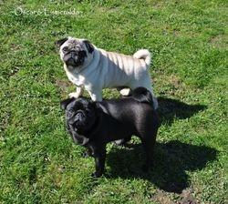 Oscar and Esmeralda