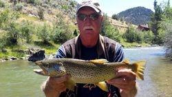 Ruby River Montana Brown