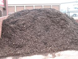 Premium Walnut Brown Mulch