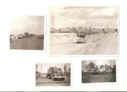 Darwin 1968