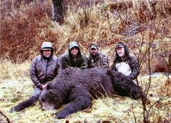 Howard Young's Bear