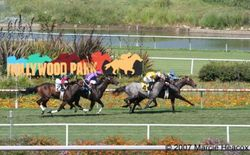 Scenic Hollywood Park Racing