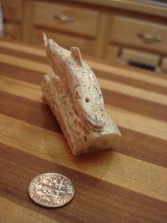 Trout Nameplate-deer antler-detail