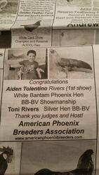 Aiden Tolentino Rivers White Bantam Hen