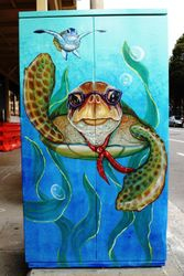 TURTLES     Auckland St Newcastle