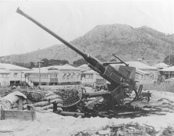 40mm Bofors AA Gun: