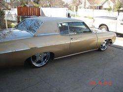 35.69 Impala