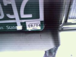 Miss Maitland--Vehicle Tag Plate Sticker
