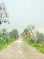 Rainbow hits the Road/ Regenboog op de weg