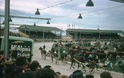 196 Melbourne Royal Show 1956