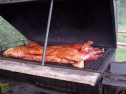 A true pig in a pit (or grill?)