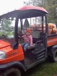 Hauling pumpkins