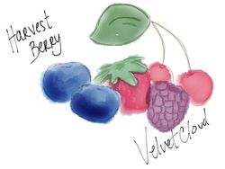 Harvest Berry Velvet Cloud E Liquid