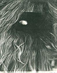 Masquerading Around, Photocopier, 8½x11, Original Sold