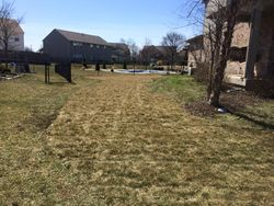 After Sod