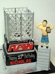 Cage Wrestling Cake with John Cena(B029)