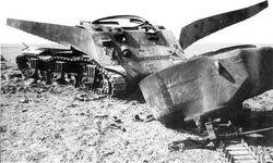 The losses of Sherman's: