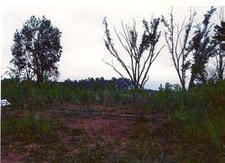 Chrisman Farm, New Site, Alabama