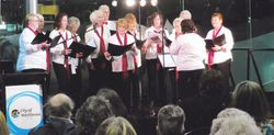 Singing at the Harmony Exhibition
