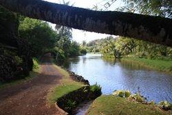 Allerton Gardens