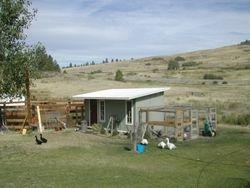 Coop summer of 2009