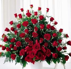 4 dozen of roses