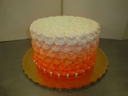 20 servings ombre rosette $60