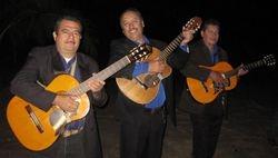 Trio Tekila