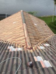 Chemical Roof Cleaning