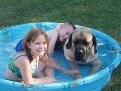 Chuckwagon likes to swim