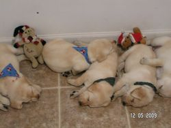 Always a sister near