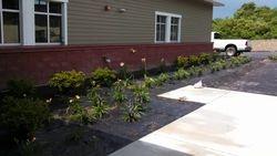 Plant Design & Weed Barrier
