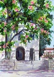 San Luis Obispo Mission Tree