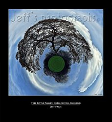Tree Little Planet, Osbaldeston, England
