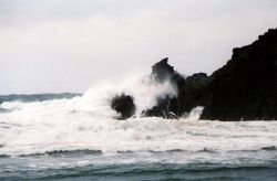 A stormy day at Bottle Cove