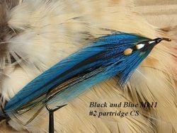 Black and Blue MK11