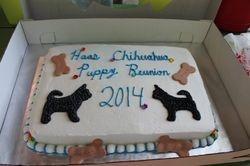 2014 Haas Chihuahua Reunion Cake