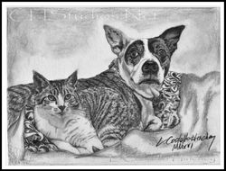 Kitty & Zoey Pet Portrait Commission