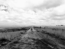 Farm Road 005