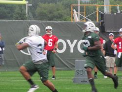 New York Jets' Starting Quarterback, Mark Sanchez